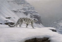 Winter's Solitude by Richard Burns - various sizes