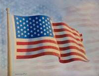 American Flag 5 by Richard Burns - various sizes