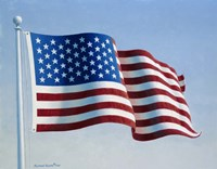 American Flag 3 Fine Art Print