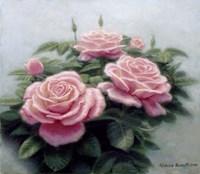 Pink Ladies Fine Art Print