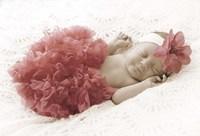 Baby In Pink Bowb Framed Print