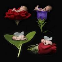 Parker Babies Framed Print