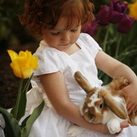 Little Girl And Bunny Fine Art Print