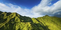 Manoa Mountains by Cameron Brooks - various sizes