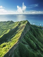 Diamond Head Summit Fine Art Print