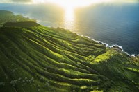 Descending Koko Crater by Cameron Brooks - various sizes