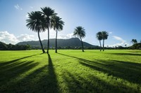 Kapiolani Park Classic Treeline by Cameron Brooks - various sizes