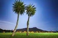 Kapiolani Park Moonrise by Cameron Brooks - various sizes