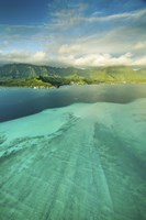 Sandbar Morning Vertical by Cameron Brooks - various sizes