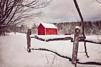 Red Barn by Celia Kelly - various sizes