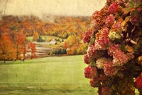 Autumn Colors Fine Art Print