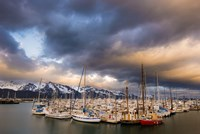 Alaska Harbor by Dan Ballard - various sizes