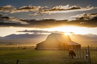 Wet Mountain Barn I by Dan Ballard - various sizes