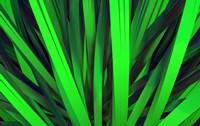 Grass by DesignPics - various sizes