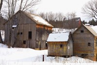 Winter Barns Fine Art Print