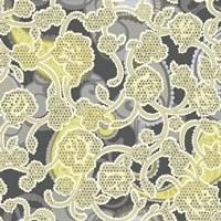 Sheer Romance Lace III Fine Art Print