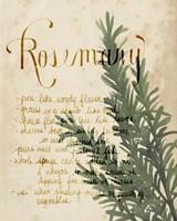 Herb Study IV Fine Art Print