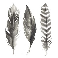 Watercolor Feathers I Fine Art Print