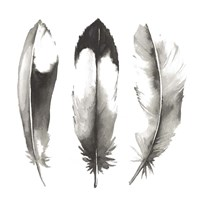 Watercolor Feathers II Fine Art Print