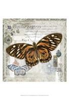 Butterfly Artifact I Framed Print