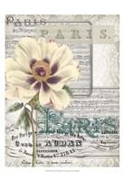 """Musical Paris II by Jennifer Goldberger - 13"""" x 19"""""""