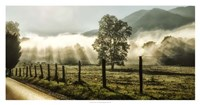 "Sunrise in Cades Cove by Danny Head - 38"" x 20"""