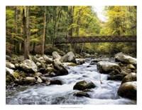 "Bridging the Seasons by Danny Head - 26"" x 20"""