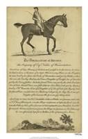 """Horse Portraiture V - 14"""" x 22"""", FulcrumGallery.com brand"""
