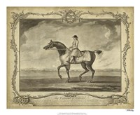 "22"" x 18"" Horse Prints"