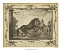 "Distinguished Horses III - 22"" x 18"""