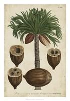 Vintage Tropicals I Fine Art Print