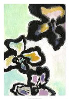 "Orchid Pop II by Jodi Fuchs - 18"" x 26"" - $31.49"