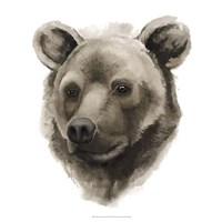 """Western Animal Study I by Grace Popp - 20"""" x 20"""""""