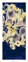 "Botanical Gale II by Grace Popp - 12"" x 26"""