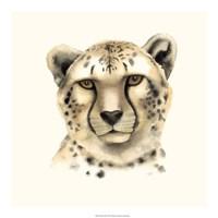 "Safari Cat IV by Grace Popp - 20"" x 20"""