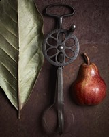 Leaf with Pear 1 by Michael Harrison - various sizes