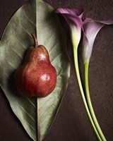 Leaf with Pear 3 by Michael Harrison - various sizes