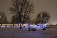 Light In The Park Fine Art Print