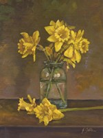 Late Daffs Fine Art Print