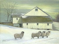 Sheep At Granough Fine Art Print