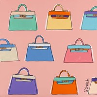 Kelly Bags - Pink by Brian Nash - various sizes