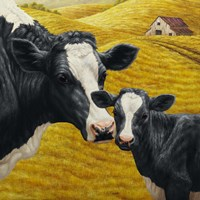 Holstein Cow and Calf Fine Art Print