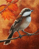 Autumn Chickadee Fine Art Print