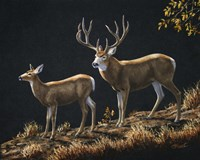 Mule Deer Ridge Fine Art Print