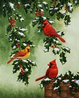 Cardinals Hollies with Snow by Crista Forest - various sizes, FulcrumGallery.com brand