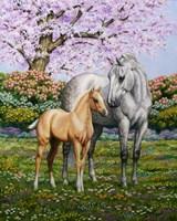 Spring's Gift Fine Art Print