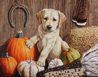 Pumpkin Harvest Puppy Fine Art Print