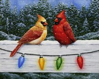 Christmas Cardinals Greeting Card by Crista Forest - various sizes