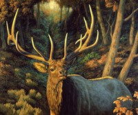 Autumn Majesty by Crista Forest - various sizes