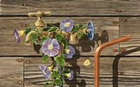Well Watered by Dempsey Essick - various sizes